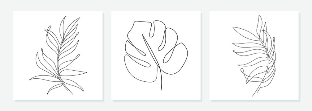 One line drawing vector monstera leaf and palm tree leaves. Modern single line art, aesthetic contour. Perfect for home decor such as posters, wall art, tote bag or t-shirt print, sticker, mobile case