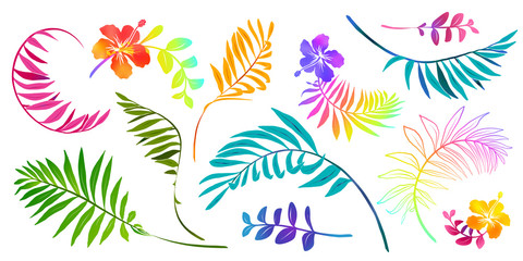 Vivid colors tropical leaves and flowers vector set isolated on white background