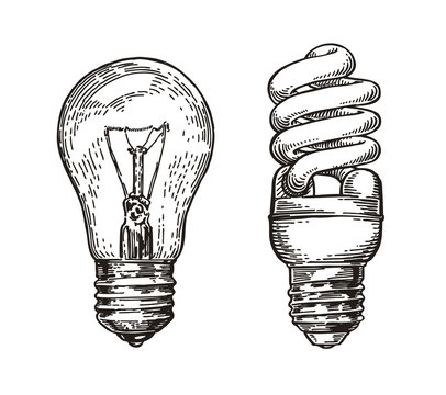 Lightbulb sketch. Energy, electric light bulb, electricity concept. Hand drawn vector illustration