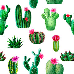 Pattern of watercolor exotic cactus, succulent, isolated illustration on white background. hand drawn watercolor elements, botanical collection. Design for textile, fabric, print, wrapping, paper.