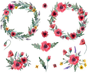 Wild flowers wreaths, compositions and separate elements isolated on white background, watercolor illustration.