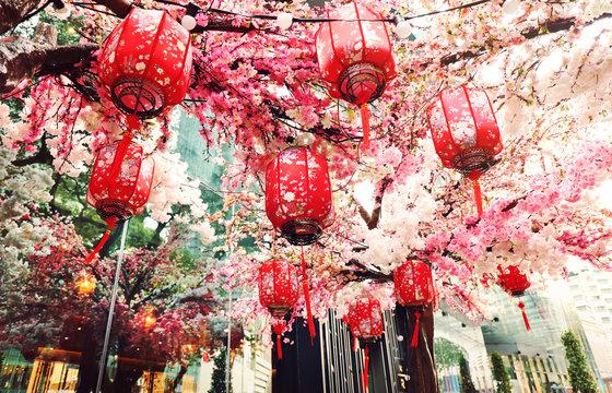 Red Chinese lanterns and sakura. Chinese New Year celebration.