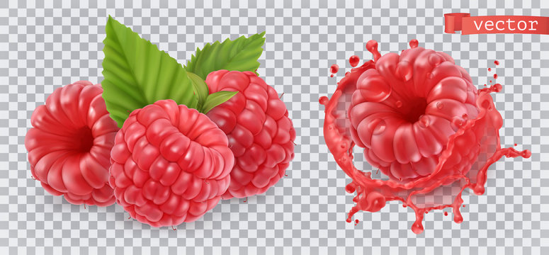 Raspberry. Sweet fruit. 3d realistic vector icon