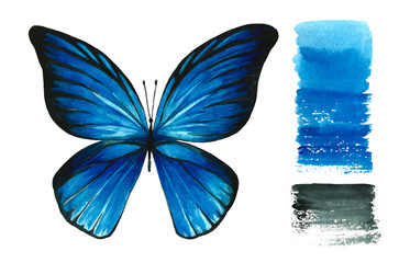 Watercolor blue butterfly and handmade palette