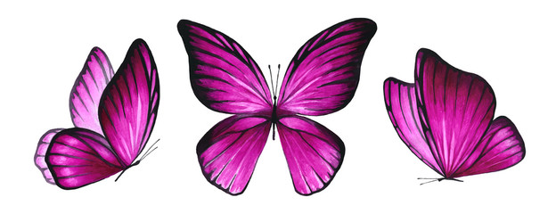 Three watercolor pink bright butterflies