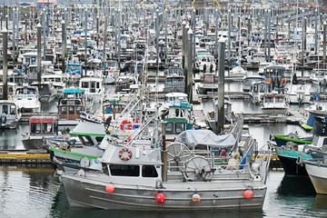 Fishing Fleet - Homer, Alaska