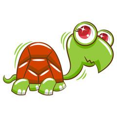 Turtle clipart cartoon