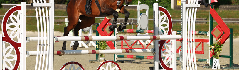 Horse in clipping over the obstacle in the jumping tournament..