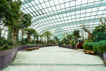 Beautiful architecture building flower dome garden and greenhouse forest for travel Fototapete