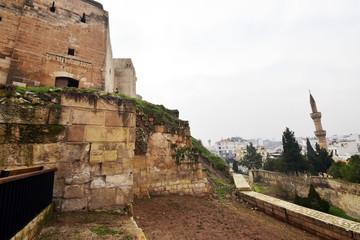 Photo sur Plexiglas Fortification kale