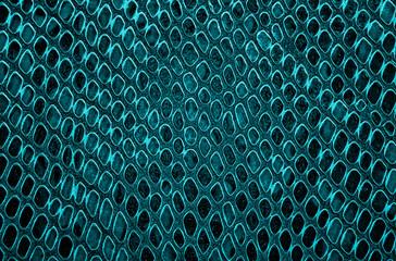 Wall Mural - Blue snake skin texture. Seamless pattern.