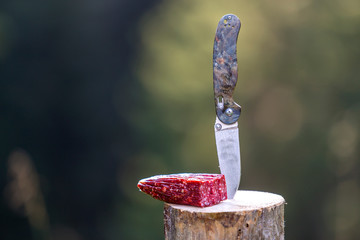 Close-up of folding pocket knife stuck vertically in tree stump and piece of sausage outdoors on dark green forest blurred copy space background. Tourism, traveling, snack, active lifestyle concept.