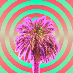Contemporary art collage of hypnotic circles and cutted palm tree on summer beach party