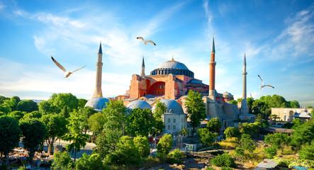 Hagia Sophia Istanbul Wall mural