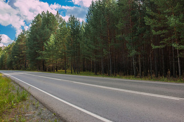 Road through green deep forest in Russia