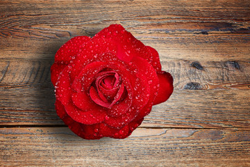 Romantic red rose with water droplets on textured wooden table