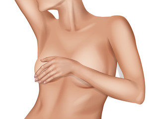 Female Breast.  Detailed  realistic illustration on a white background. Plastic correction and surgery concept.