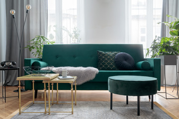 Bright and sunny luxury home interior with design green velvet sofa, furniture,  gold coffee tables, pouf, plants and accessroies. Big windows with grey curtains. Stylish decor of living room.