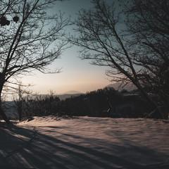 Beautiful, magic landscape; snow and soft sunrise pink light. Nobody around, just peace