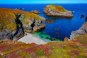 france, brittany, belle île island : creek