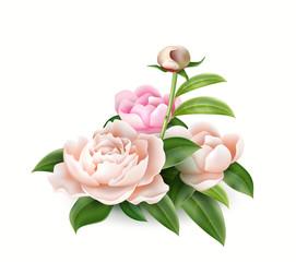 Vector 3d realistic pink peony elegant bouquet