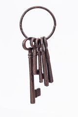 Rustic key ring