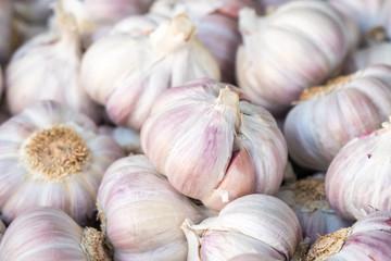 Fresh garlic on market table closeup photo. Vitamin healthy food spice image