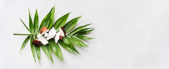 Fresh Coconut pieces on palm leaf on white surface. Exotic botanical concept for cosmetics, spa, perfume, health care organic products, aroma background mockup. Long wide banner with copy space.