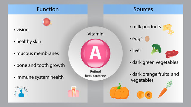 Vitamin A vector design. Vitamin A function and sources. Beta-carotene, retinol
