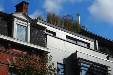 Dachgarten Altbauviertel