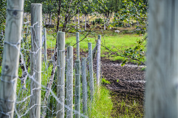 Old wooden fence with steel wire