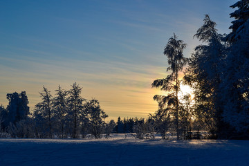 Sunset on a snowy field