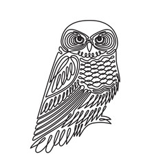 Owl in continuous line style icon