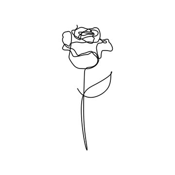 Rose flower one line vector minimalism drawing style