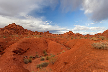Canvas Prints Cuban Red Valley of Fire State Park at sunset, Nevada, United States