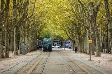 The modern tram in the French city of Bordeaux, passing along the Allees de Munich, a leafy avenue in the center of the city.Gironde, France