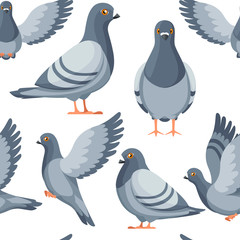 Seamless pattern. Colorful Icon set of Pigeon bird flying and sitting. Flat cartoon character design. Colorful bird icon. Cute pigeon template. Vector illustration on white background