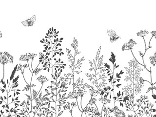 Wild and herbs plants set. Botanical hand drawn sketch. Spring flowers. Vector design. Can use for greeting cards, wedding invitations, patterns.