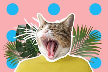 Cat and palm leaf collage, pop art concept design. Minimal vibrant summer background.