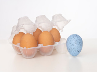 Individuality, uniqueness, difference or diversity. One beautiful blue egg near plastic eggbox with normal brown ones. On white. Dare to be different