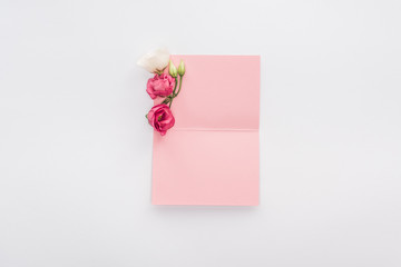 top view of blank pink card and flowers isolated on white
