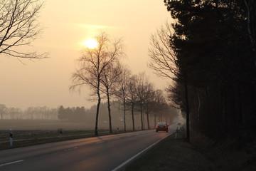 Landstraße Asphalt bei Nebel und Sonne