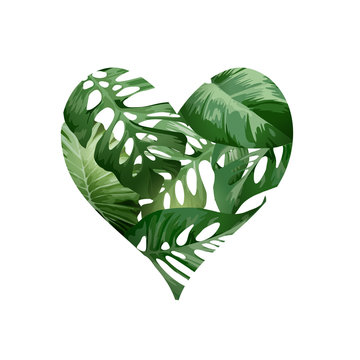 A green heart love concept made from tropical green palm plant leaves. Vector illustration.