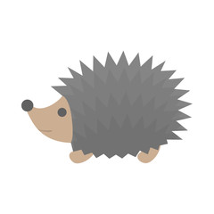 Cute little hedgehog. Animal with the prickle