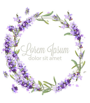Lavender wreath card watercolor Vector. Flowers bouquet background. Spring delicate banner. Wedding invitation, Women day, birthday templates
