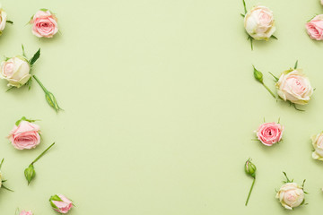 Flower background. Assorted rose border decor. Copy space on palegreen background. Flat lay.