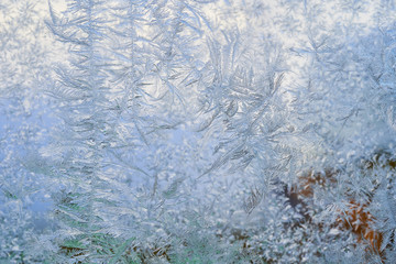 winter pattern of ice crystals on glass