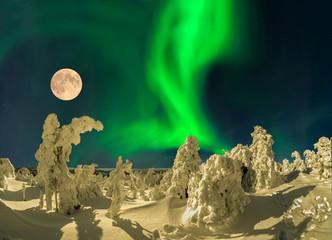 Nordlicht mit Schneelandschaft und verschneiten Bäumen