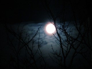 mystic full moon in the night