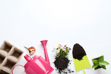 Garden tools with flwoers and bulbs on white blackground